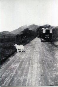 TighanLoanHotel Bus(3)300